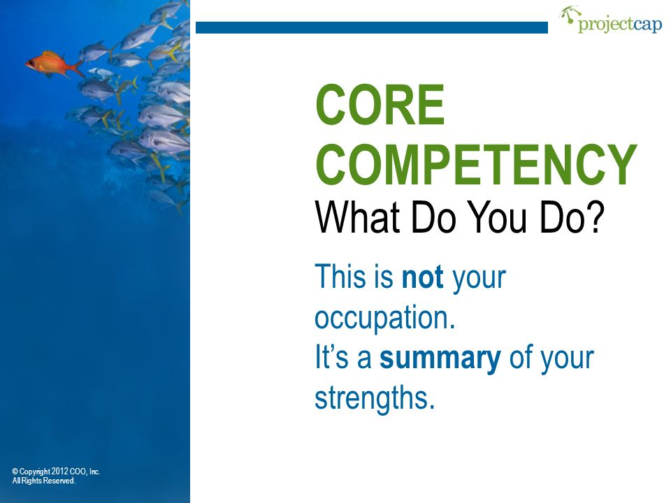 What Do You Do? CORE COMPETENCY This is not your occupation. Its a summary of your strengths. © Copyright 2012 COO, Inc. All Rights Reserved.