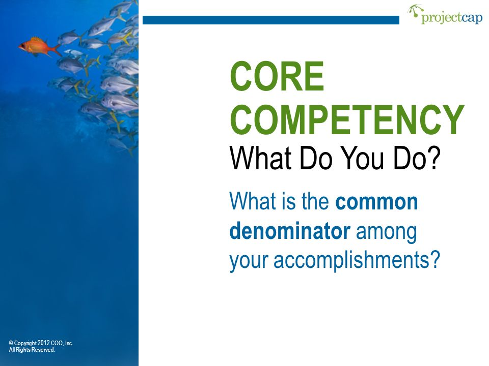 What Do You Do? What is the common denominator among your accomplishments? CORE COMPETENCY © Copyright 2012 COO, Inc. All Rights Reserved.