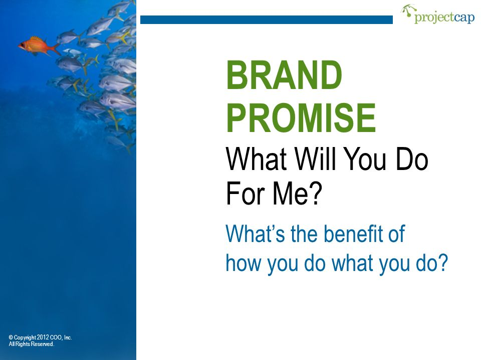 What Will You Do For Me? BRAND PROMISE Whats the benefit of how you do what you do? © Copyright 2012 COO, Inc. All Rights Reserved.