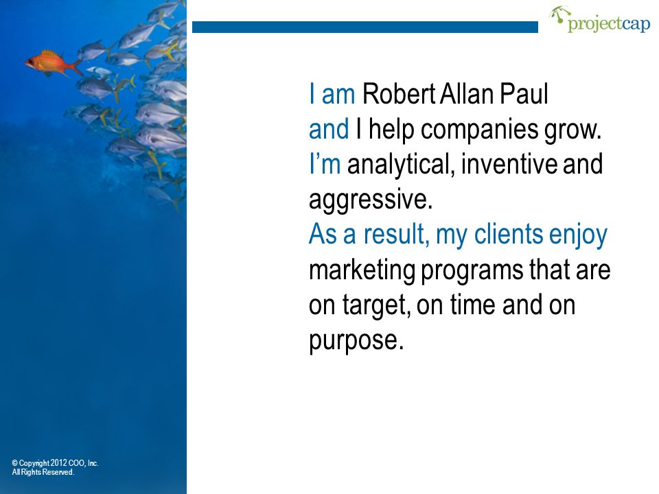 I am Robert Allan Paul and I help companies grow. Im analytical, inventive and aggressive. As a result, my clients enjoy marketing programs that are o