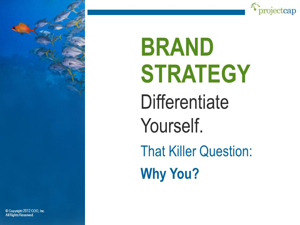 Differentiate Yourself. BRAND STRATEGY That Killer Question: Why You? © Copyright 2012 COO, Inc. All Rights Reserved.
