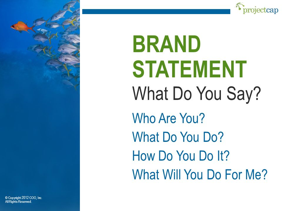 What Do You Say? BRAND STATEMENT Who Are You? What Do You Do? How Do You Do It? What Will You Do For Me? © Copyright 2012 COO, Inc. All Rights Reserve