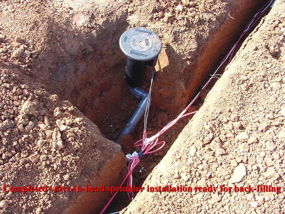 Completed valve-in-head sprinkler installation ready for back-filling