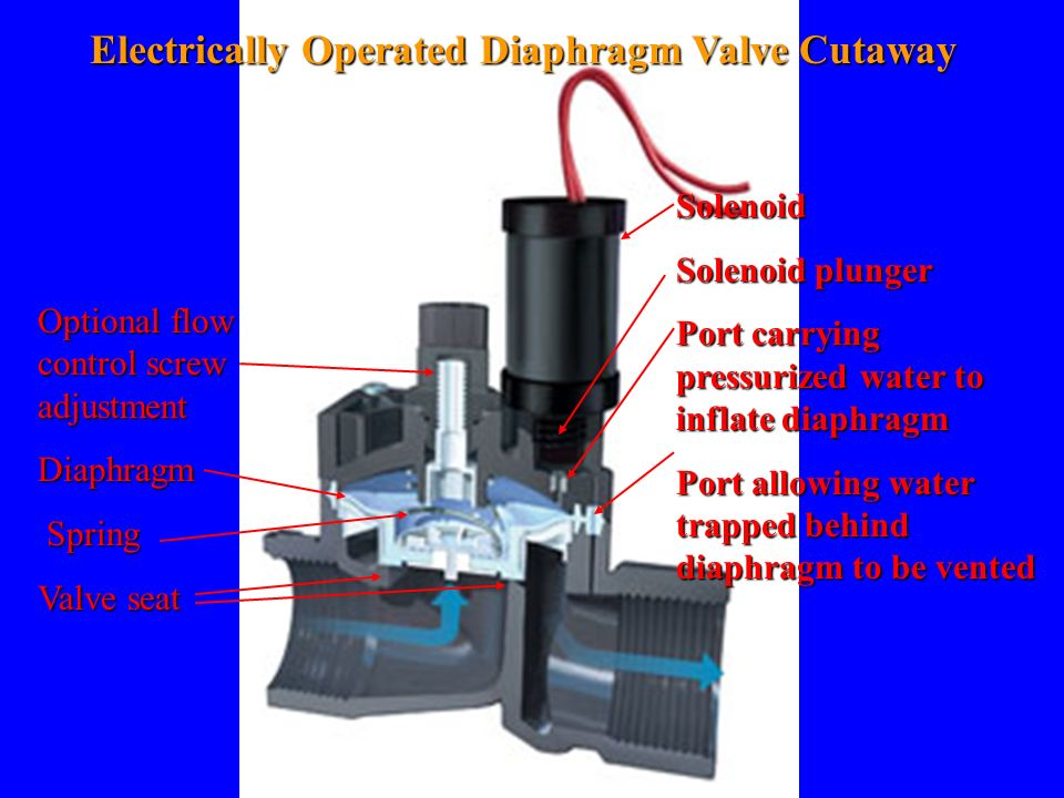 Electrically Operated Diaphragm Valve Cutaway Solenoid Solenoid plunger Port carrying pressurized water to inflate diaphragm Port allowing water trapp