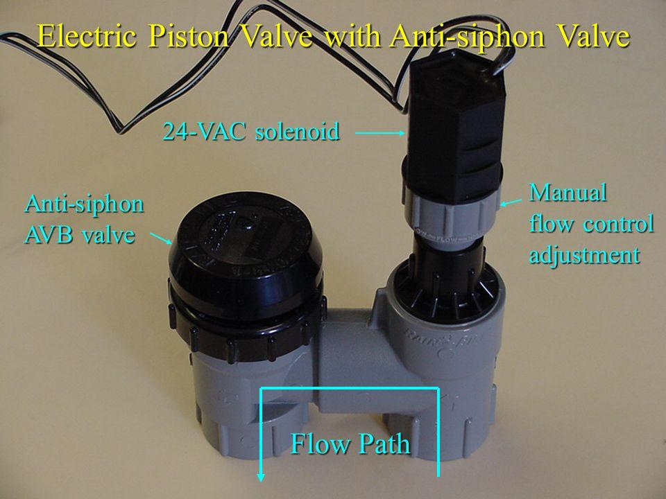 Electric Piston Valve with Anti-siphon Valve 24-VAC solenoid Flow Path Manual flow control adjustment Anti-siphon AVB valve