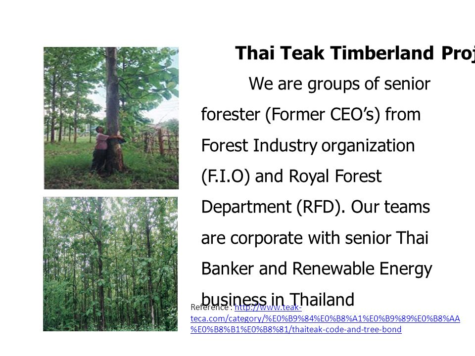 We are groups of senior forester (Former CEOs) from Forest Industry organization (F.I.O) and Royal Forest Department (RFD). Our teams are corporate wi