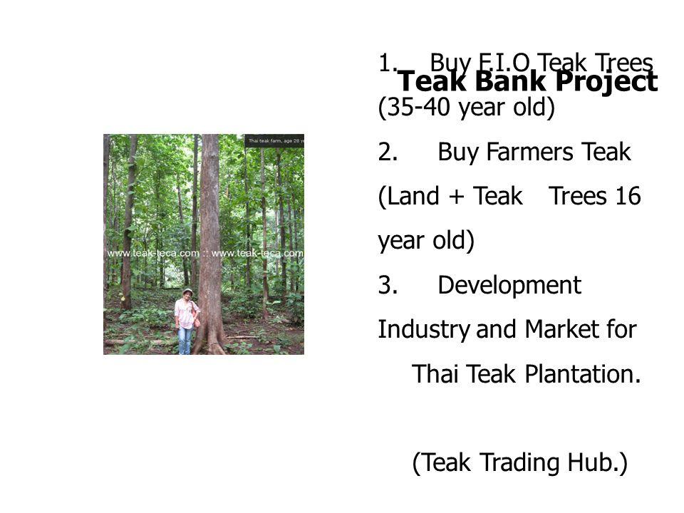 1.Buy F.I.O Teak Trees (35-40 year old) 2. Buy Farmers Teak (Land + Teak Trees 16 year old) 3.