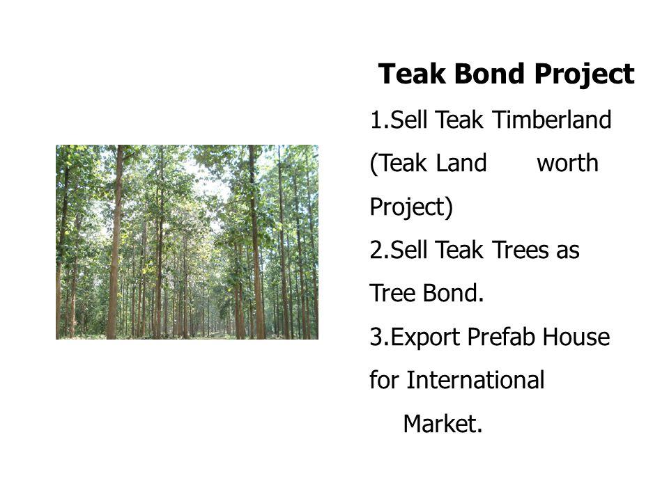 1.Sell Teak Timberland (Teak Land worth Project) 2.