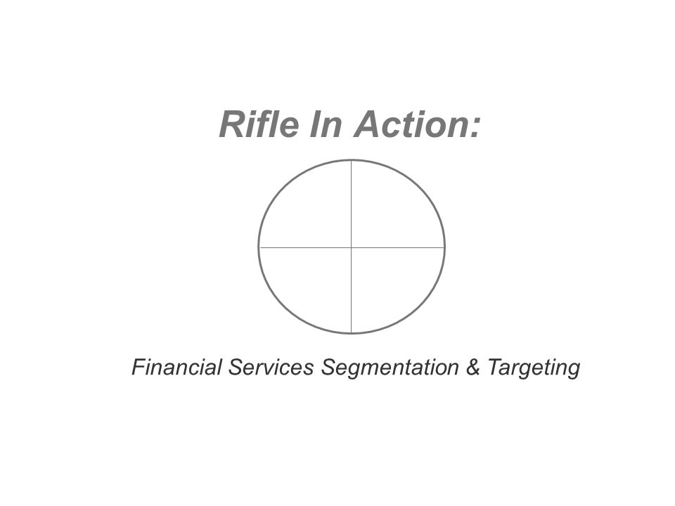 Rifle In Action: Financial Services Segmentation & Targeting
