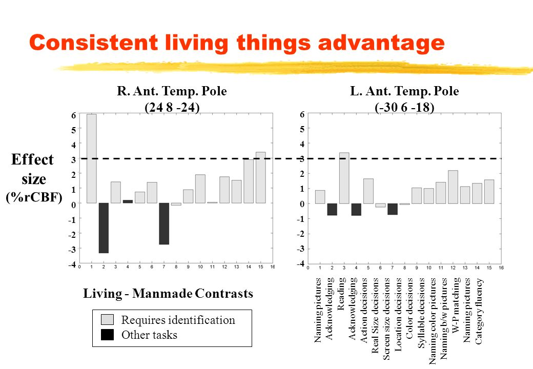 Consistent living things advantage Effect size (%rCBF) Naming pictures Acknowledging Reading Acknowledging Action decisions Real Size decisions Screen size decisions Location decisions Color decisions Syllable decisions Naming color pictures Naming b/w pictures W-P matching Naming pictures Category fluency R.