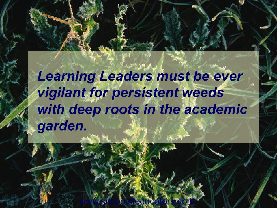 Learning Leaders must be ever vigilant for persistent weeds with deep roots in the academic garden. www.schoolofeducators.com