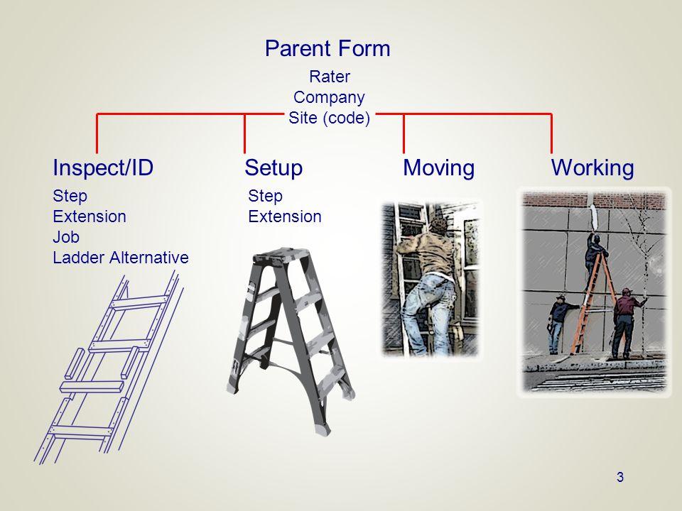 3 Parent Form Rater Company Site (code) Setup Step Extension MovingWorkingInspect/ID Step Extension Job Ladder Alternative
