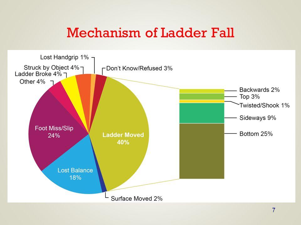 7 Mechanism of Ladder Fall