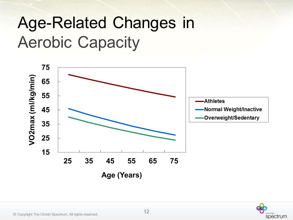 Age-Related Changes in Aerobic Capacity 12