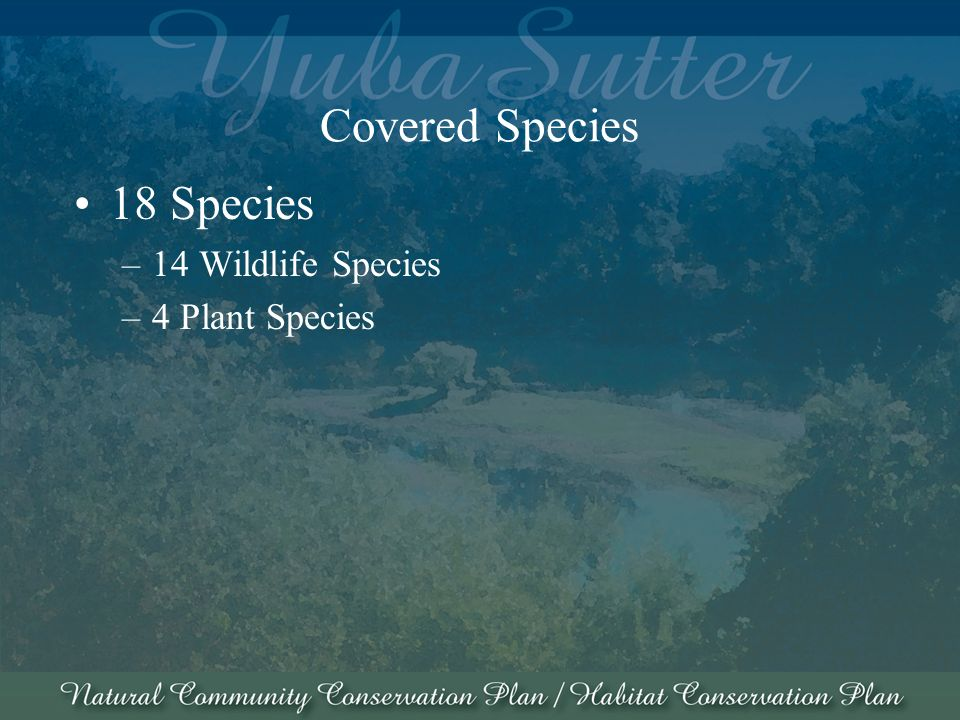 Covered Species 18 Species –14 Wildlife Species –4 Plant Species