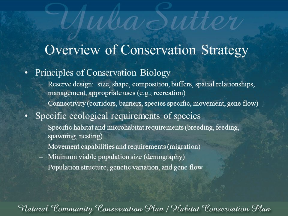 Overview of Conservation Strategy Principles of Conservation Biology –Reserve design: size, shape, composition, buffers, spatial relationships, management, appropriate uses (e.g., recreation) –Connectivity (corridors, barriers, species specific, movement, gene flow) Specific ecological requirements of species –Specific habitat and microhabitat requirements (breeding, feeding, spawning, nesting) –Movement capabilities and requirements (migration) –Minimum viable population size (demography) –Population structure, genetic variation, and gene flow