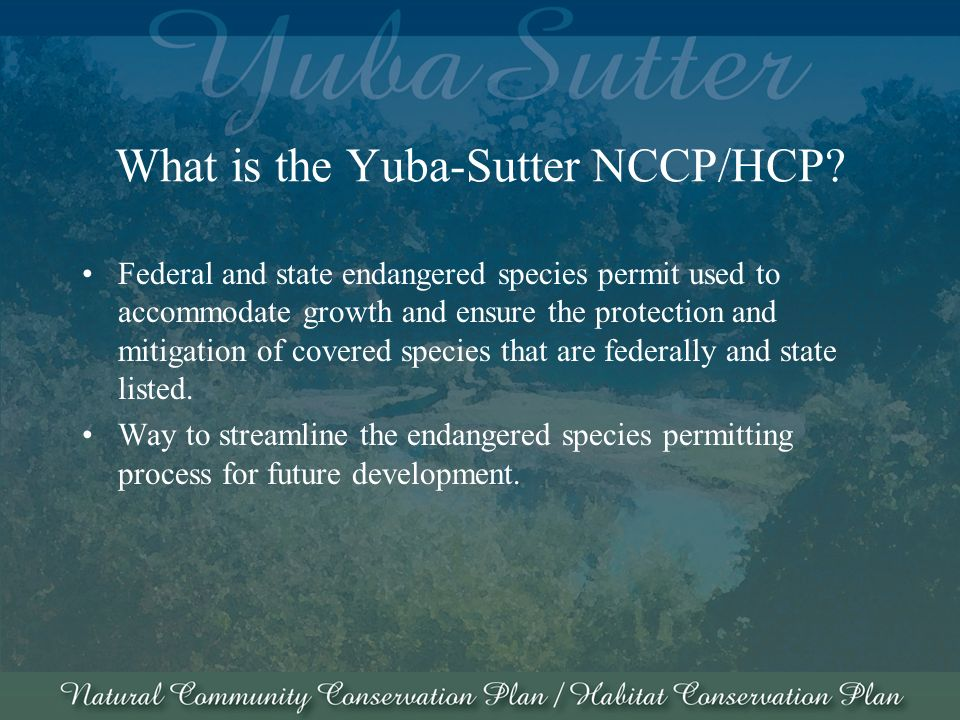 What is the Yuba-Sutter NCCP/HCP.