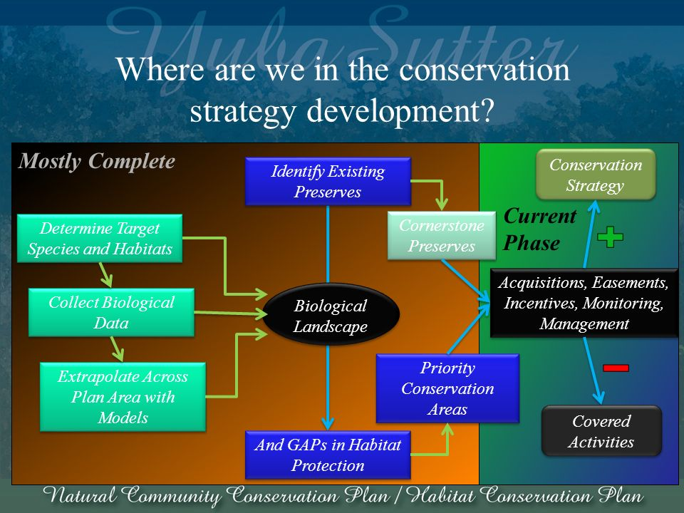 Current Phase Mostly Complete Biological Landscape Biological Landscape Where are we in the conservation strategy development.