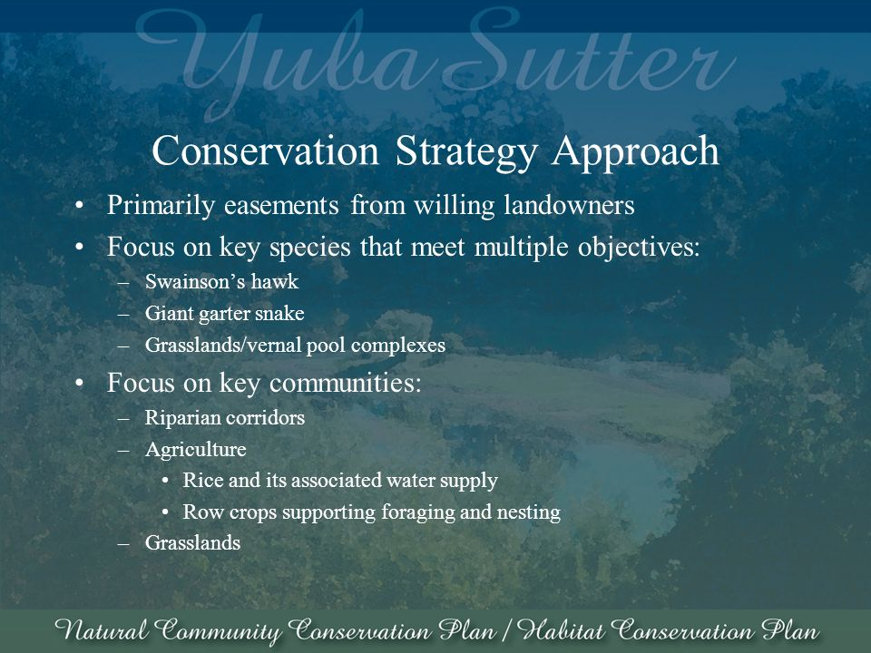 Conservation Strategy Approach Primarily easements from willing landowners Focus on key species that meet multiple objectives: –Swainsons hawk –Giant garter snake –Grasslands/vernal pool complexes Focus on key communities: –Riparian corridors –Agriculture Rice and its associated water supply Row crops supporting foraging and nesting –Grasslands