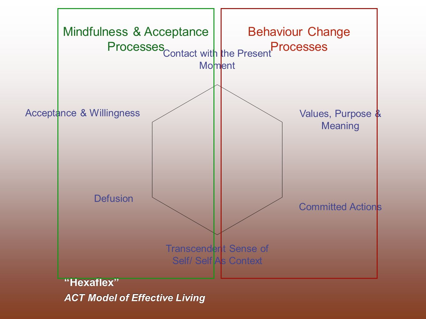 Hexaflex ACT Model of Effective Living Values, Purpose & Meaning Defusion Committed Actions Contact with the Present Moment Acceptance & Willingness T