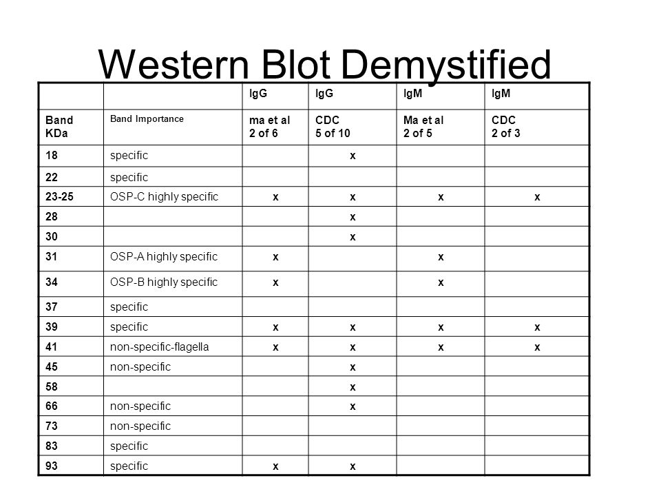Western Blot Demystified IgG IgM Band KDa Band Importance ma et al 2 of 6 CDC 5 of 10 Ma et al 2 of 5 CDC 2 of 3 18specificx 22specific 23-25OSP-C hig