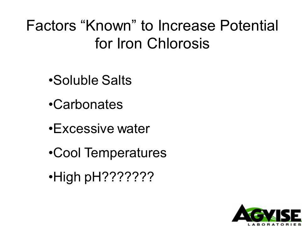 Factors Known to Increase Potential for Iron Chlorosis Soluble Salts Carbonates Excessive water Cool Temperatures High pH