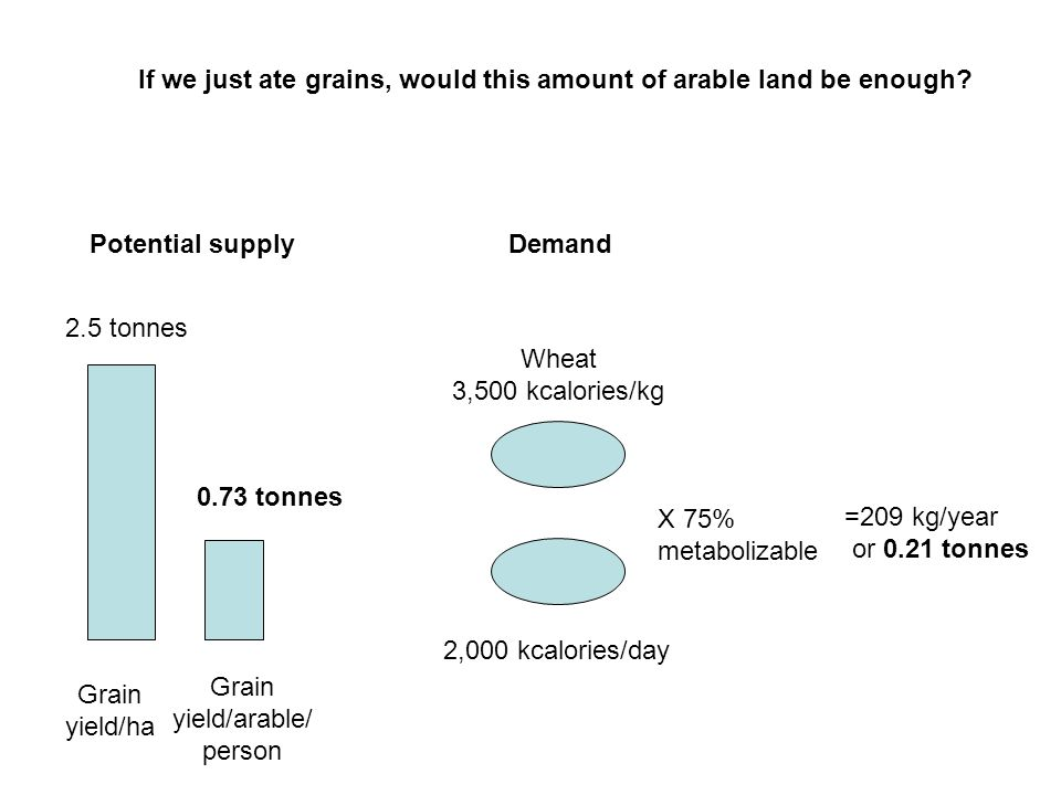 If we just ate grains, would this amount of arable land be enough.