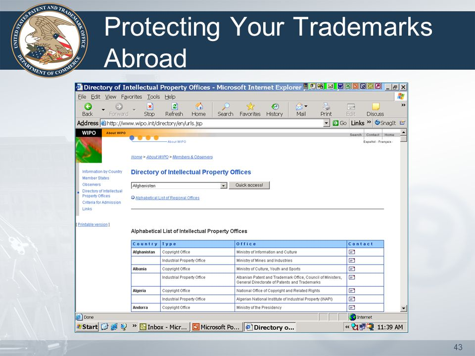42 Be proactive in protecting your trademark.