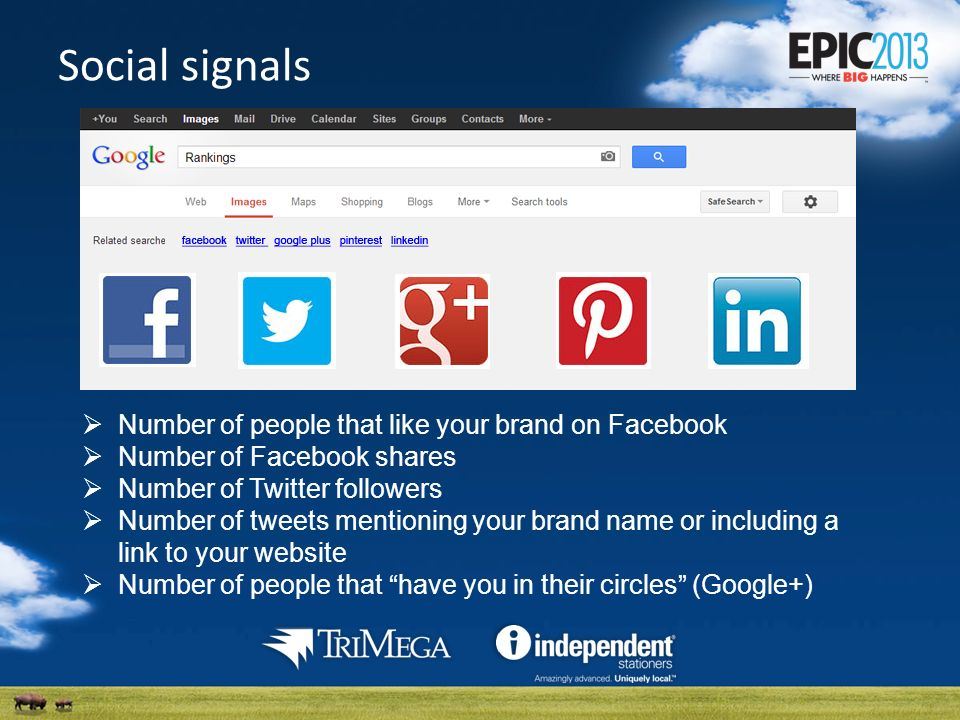 Social signals Number of people that like your brand on Facebook Number of Facebook shares Number of Twitter followers Number of tweets mentioning your brand name or including a link to your website Number of people that have you in their circles (Google+)