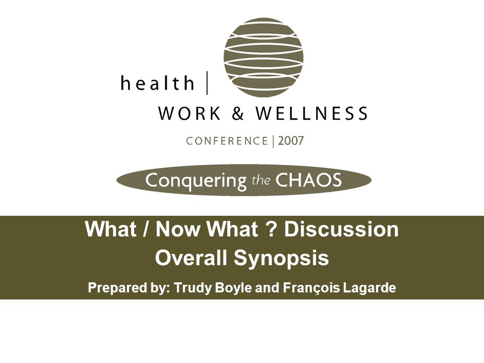 What / Now What Discussion Overall Synopsis Prepared by: Trudy Boyle and François Lagarde