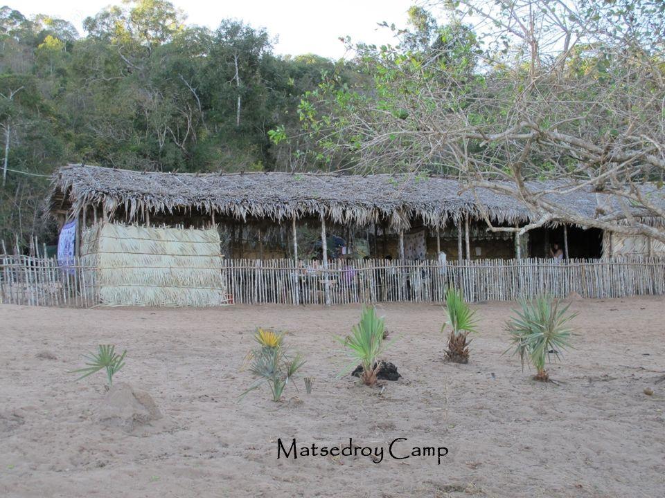 Matsedroy Camp