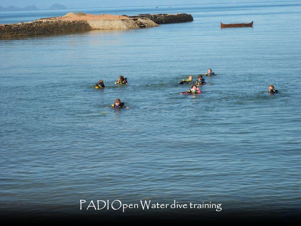 PADI Open Water dive training