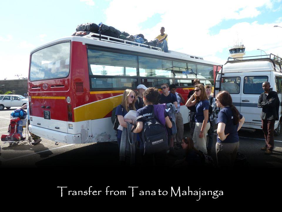 Transfer from Tana to Mahajanga