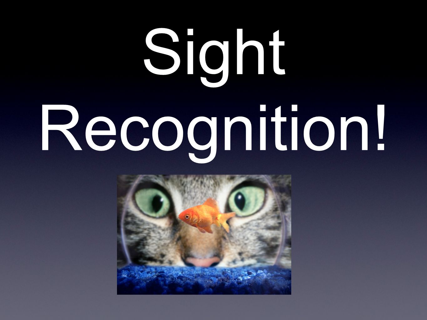 Sight Recognition!