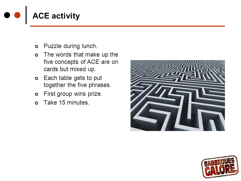 ACE activity Puzzle during lunch.