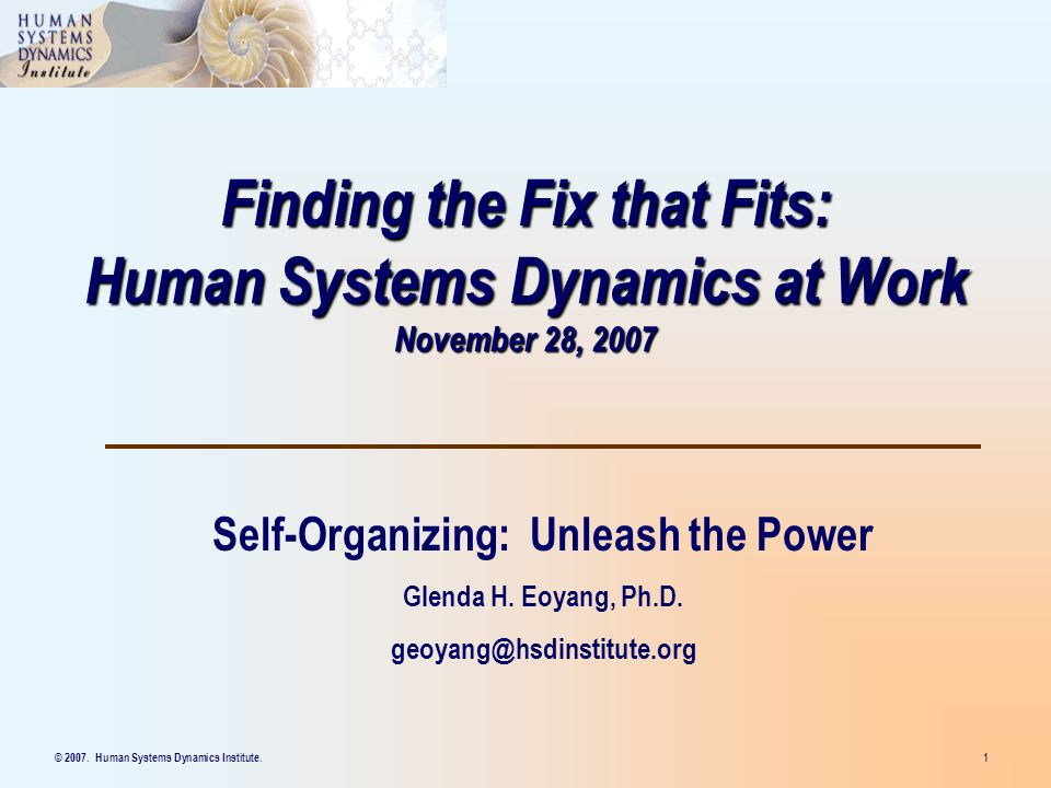 © 2007. Human Systems Dynamics Institute. 1 Finding the Fix that Fits: Human Systems Dynamics at Work November 28, 2007 Self-Organizing: Unleash the P