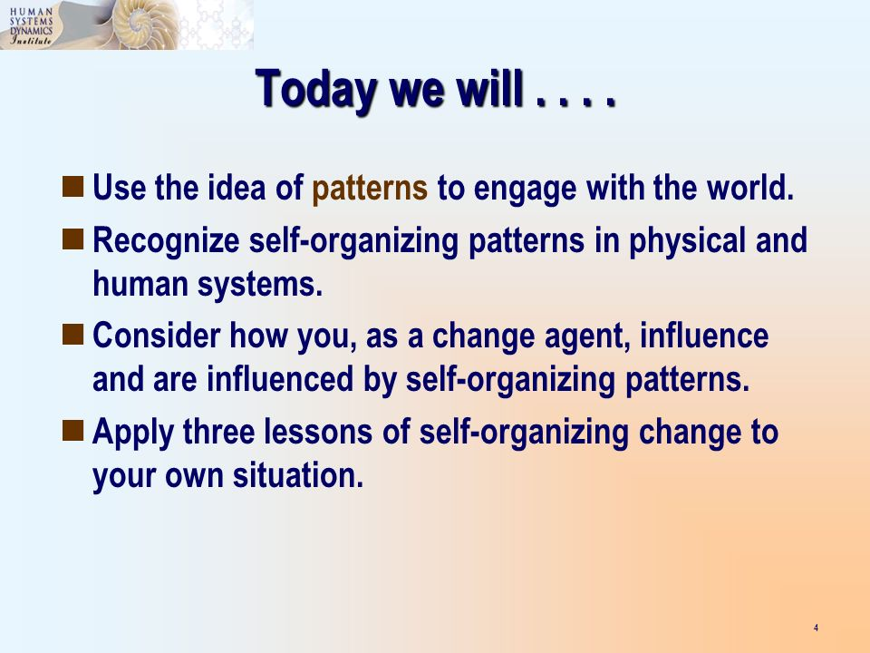 Today we will.... Use the idea of patterns to engage with the world. Recognize self-organizing patterns in physical and human systems. Consider how yo
