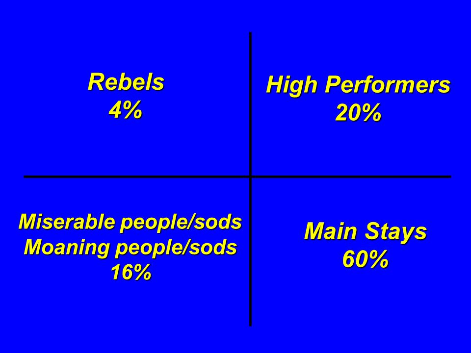 Rebels4% Main Stays 60% High Performers 20% Miserable people/sods Moaning people/sods 16%