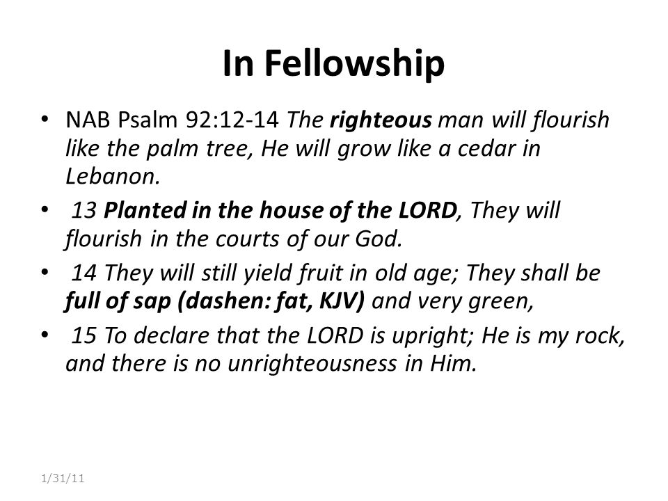 In Fellowship NAB Psalm 92:12-14 The righteous man will flourish like the palm tree, He will grow like a cedar in Lebanon.