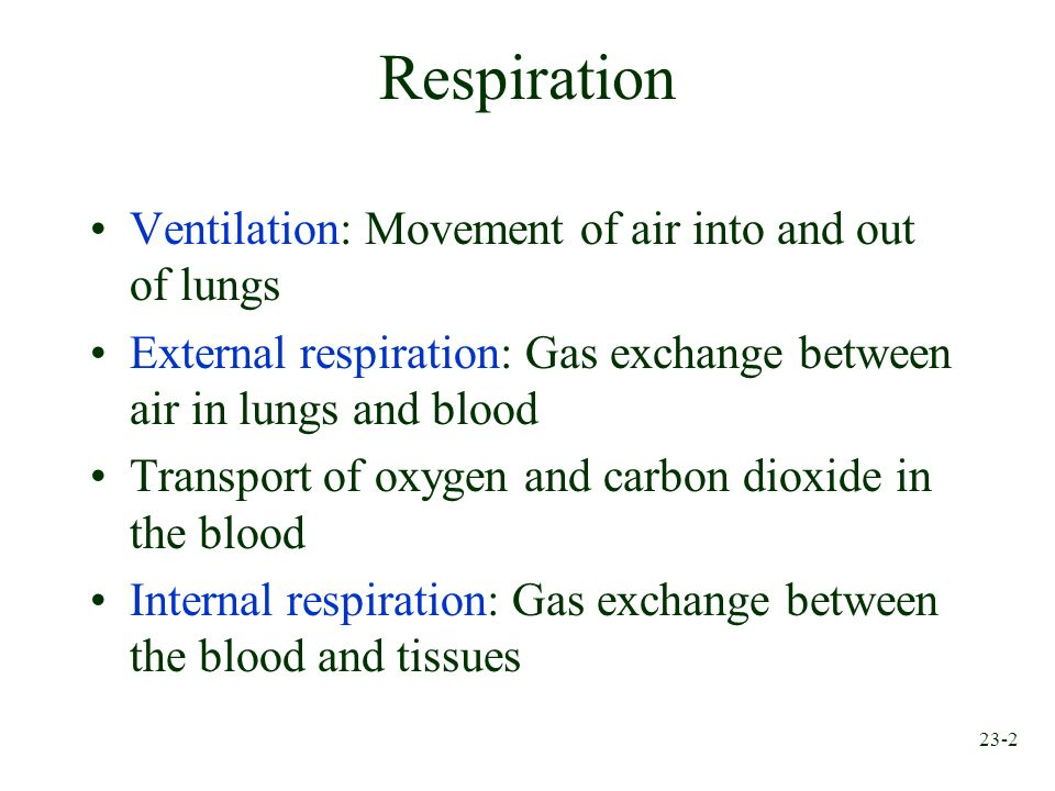 23-2 Respiration Ventilation: Movement of air into and out of lungs External respiration: Gas exchange between air in lungs and blood Transport of oxy