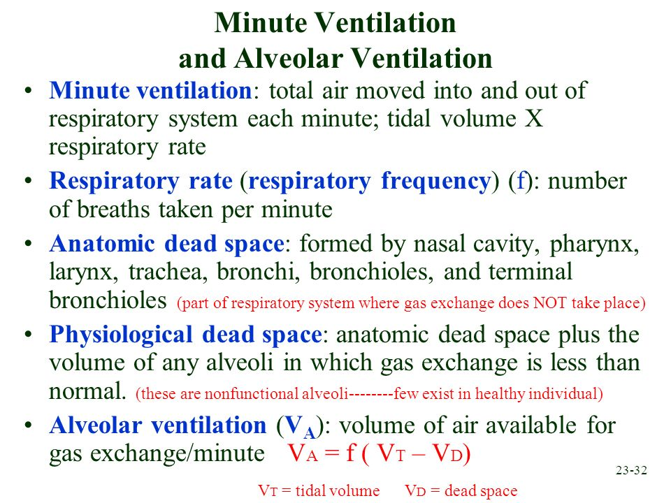 23-32 Minute Ventilation and Alveolar Ventilation Minute ventilation: total air moved into and out of respiratory system each minute; tidal volume X r