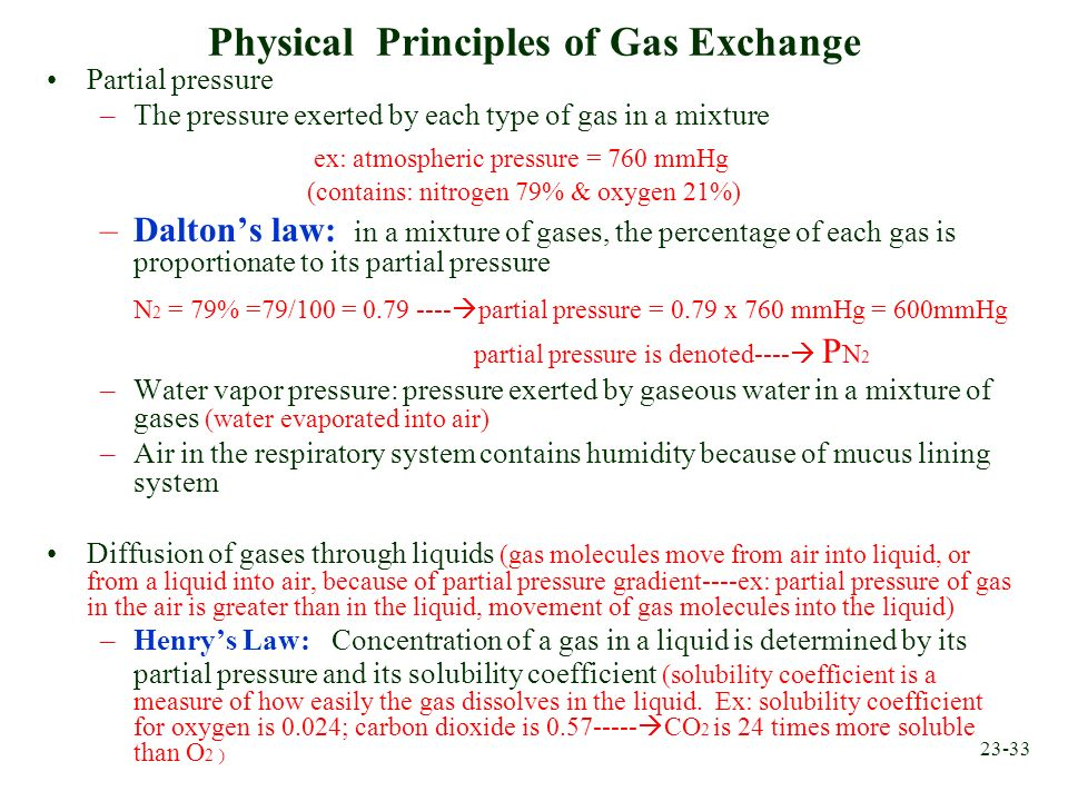 23-33 Physical Principles of Gas Exchange Partial pressure –The pressure exerted by each type of gas in a mixture ex: atmospheric pressure = 760 mmHg