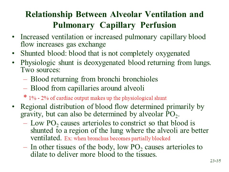 23-35 Relationship Between Alveolar Ventilation and Pulmonary Capillary Perfusion Increased ventilation or increased pulmonary capillary blood flow in