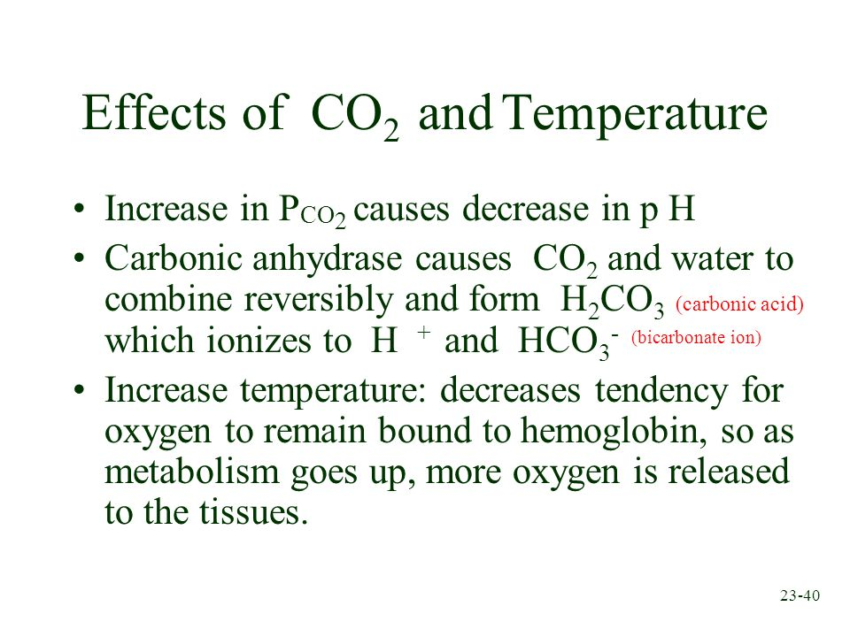 23-40 Effects of CO 2 and Temperature Increase in P CO 2 causes decrease in p H Carbonic anhydrase causes CO 2 and water to combine reversibly and for