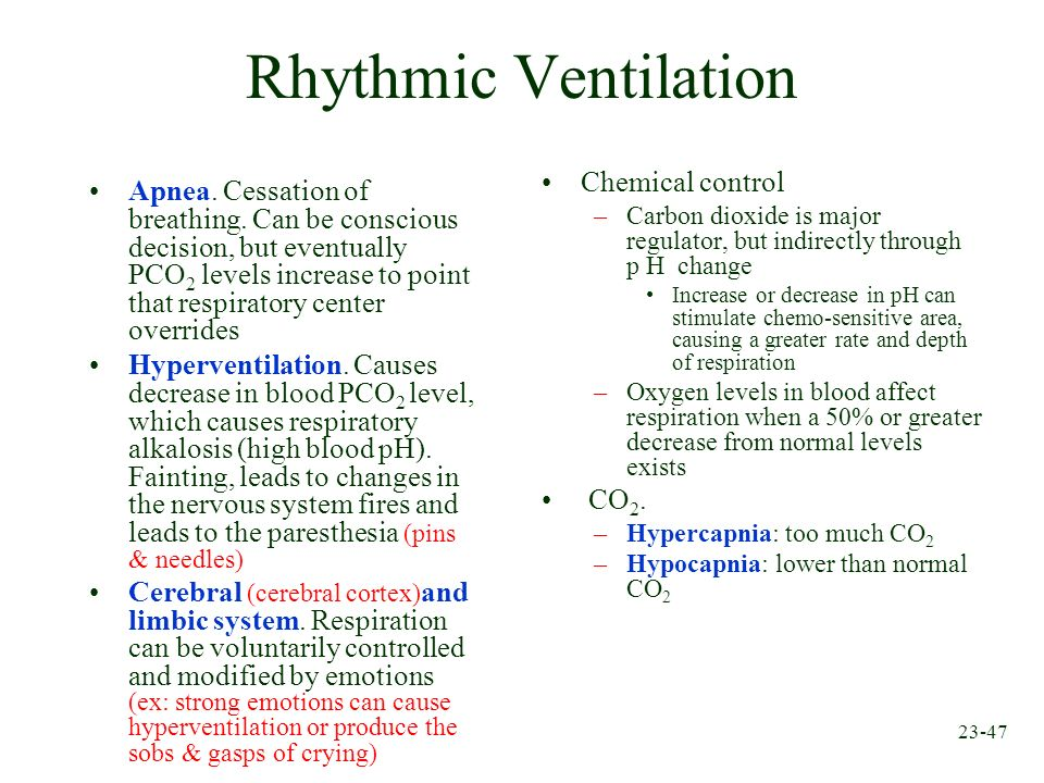 23-47 Rhythmic Ventilation Apnea. Cessation of breathing. Can be conscious decision, but eventually PCO 2 levels increase to point that respiratory ce