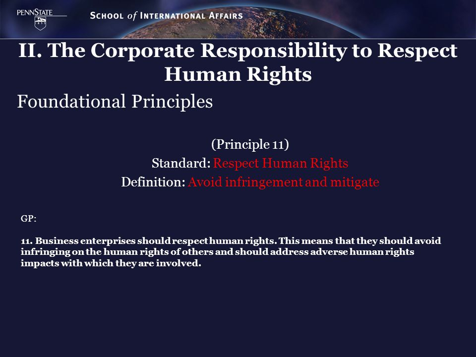 Foundational Principles (Principle 11) Standard: Respect Human Rights Definition: Avoid infringement and mitigate GP: 11. Business enterprises should