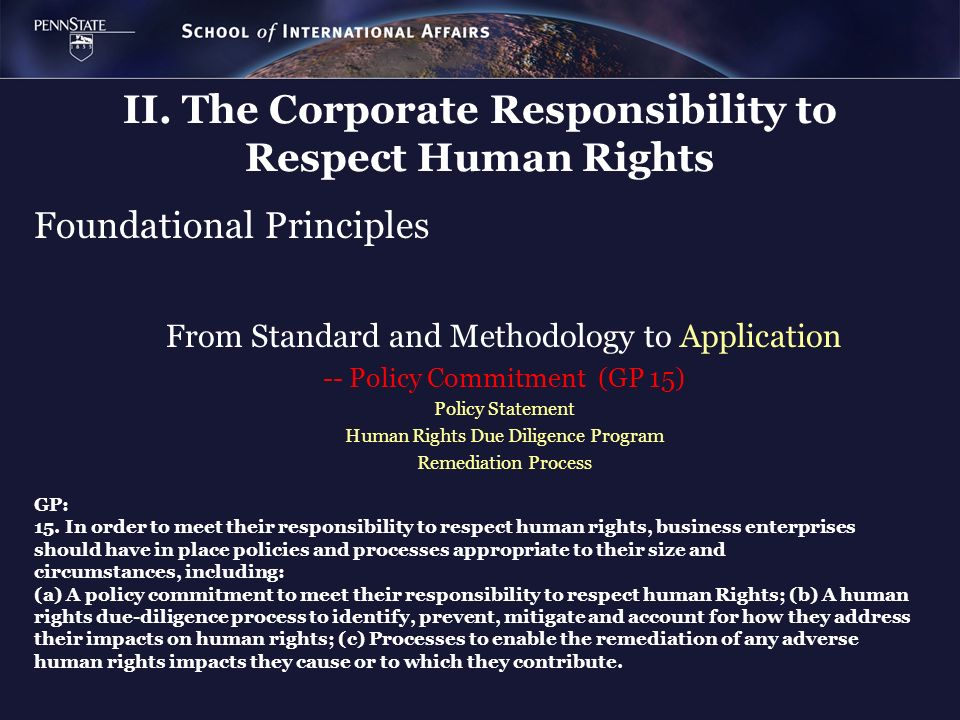 II. The Corporate Responsibility to Respect Human Rights Foundational Principles From Standard and Methodology to Application -- Policy Commitment (GP
