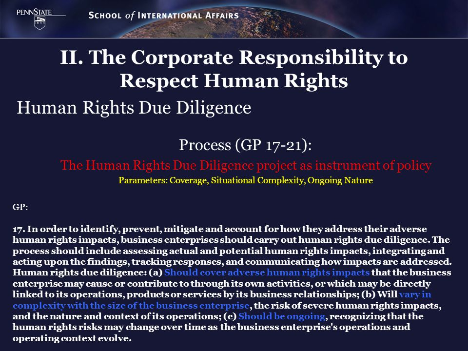 Human Rights Due Diligence Process (GP 17-21): The Human Rights Due Diligence project as instrument of policy Parameters: Coverage, Situational Comple