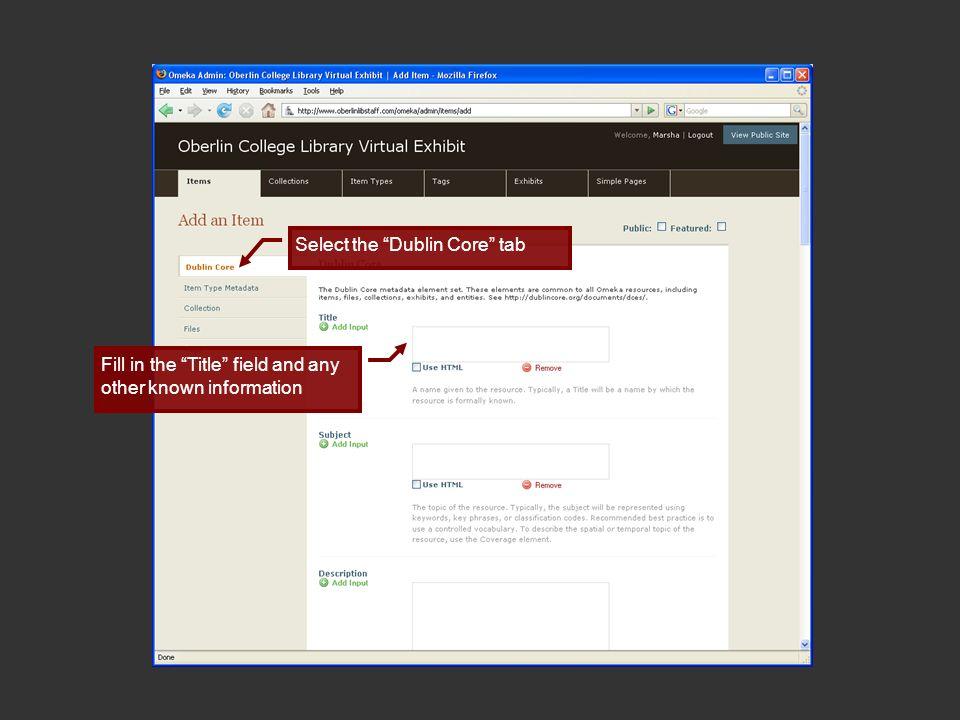 Select Item Type Metadata