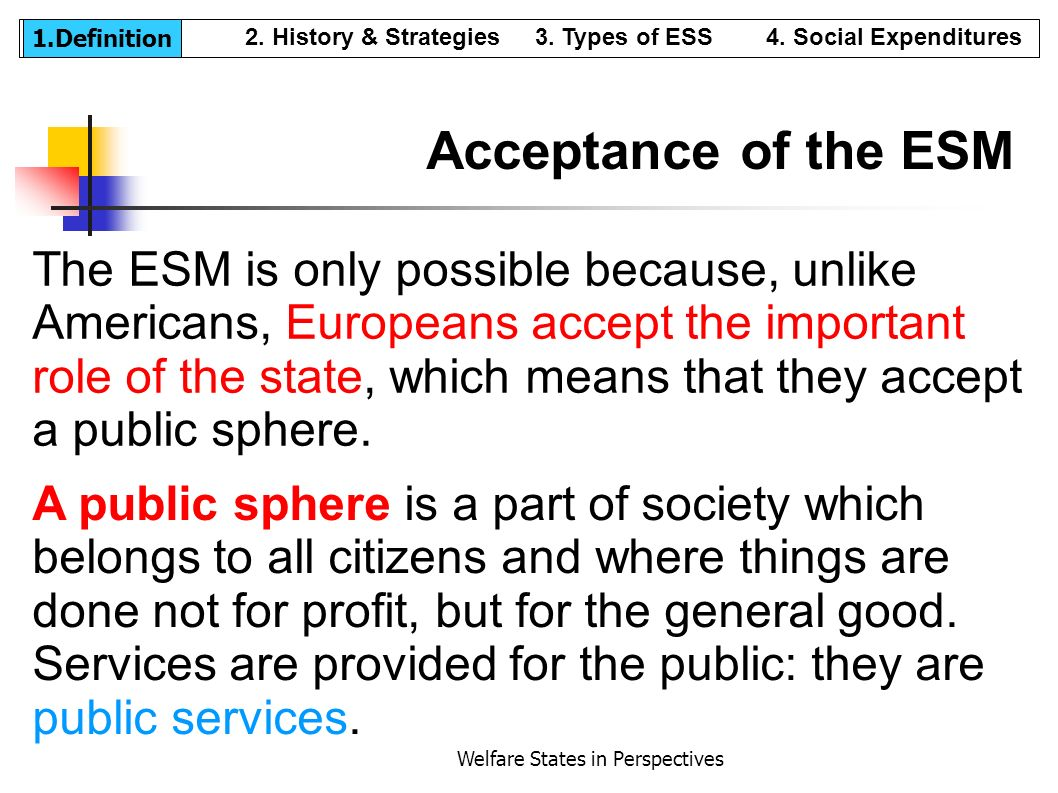 Welfare States in Perspectives The ESM is only possible because, unlike Americans, Europeans accept the important role of the state, which means that